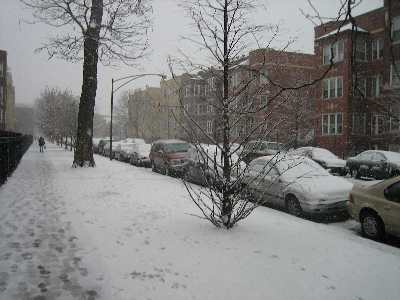 snow no